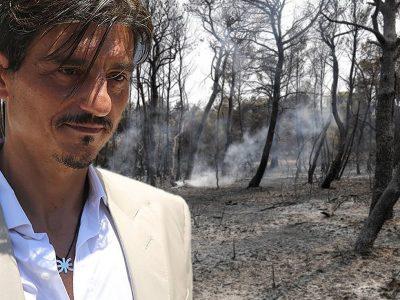 Γιαννακόπουλος: Η ΒΙΑΝΕΞ αναλαμβάνει την αναδάσωση της Βαρυμπόμπης